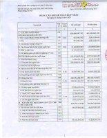 Báo cáo tài chính hợp nhất quý 1 năm 2013 - Công ty cổ phần Địa ốc Dầu khí