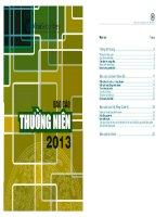 Báo cáo thường niên năm 2013 - Công ty Cổ phần Chứng khoán VINA