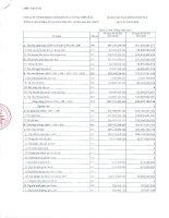Báo cáo tài chính quý 4 năm 2009 - Công ty Cổ phần Kinh doanh Khí hóa lỏng Miền Bắc