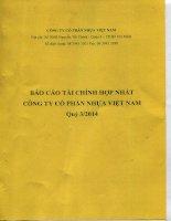 Báo cáo tài chính hợp nhất quý 3 năm 2014 - CTCP Nhựa Việt Nam