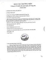 Báo cáo thường niên năm 2013 - Công ty cổ phần Du lịch Quốc tế Vũng Tàu
