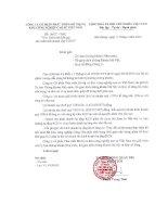 Báo cáo tài chính quý 1 năm 2016 - CTCP Phát triển đô thị và Khu công nghiệp Cao su Việt Nam