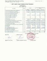 Báo cáo tài chính quý 2 năm 2010 - Công ty cổ phần Chứng khoán Phương Đông
