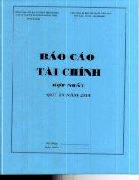 Báo cáo tài chính hợp nhất quý  năm PhanTichBaoCao - Công ty Cổ phần Vận tải Xăng dầu Đường thủy Petrolimex