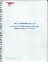 Báo cáo tài chính công ty mẹ năm 2014 (đã kiểm toán) - CTCP Nhựa Việt Nam