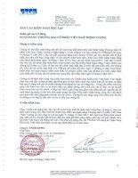 Báo cáo tài chính hợp nhất năm 2011 (đã kiểm toán) - Ngân hàng Thương mại Cổ phần Việt Nam Thịnh Vượng