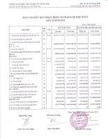 Báo cáo KQKD hợp nhất quý 2 năm 2012 - Công ty Cổ phần Xây lắp và Địa ốc Vũng Tàu