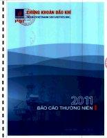 Báo cáo thường niên năm 2011 - Công ty cổ phần Chứng khoán Dầu khí