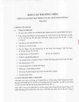 Báo cáo thường niên năm 2012 - Công ty Cổ phần Bất động sản Du lịch Ninh Vân Bay