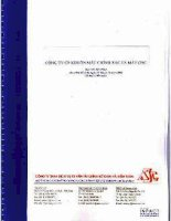 Báo cáo tài chính năm 2008 (đã kiểm toán) - Công ty cổ phần Sản xuất, Thương mại và Dịch vụ ôtô PTM