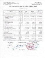 Báo cáo tài chính quý 2 năm 2013 - CTCP Vinalines Logistics - Việt Nam