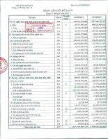 Báo cáo tài chính quý 1 năm 2012 - Công ty Cổ phần Thép Việt Ý