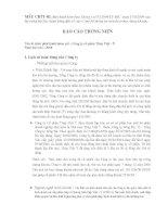 Báo cáo thường niên năm 2006 - Công ty Cổ phần Thép Việt Ý