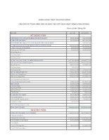 Báo cáo tài chính năm 2005 (đã kiểm toán) - Ngân hàng Thương mại cổ phần Phương Đông