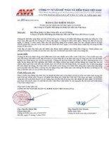 Báo cáo tài chính công ty mẹ năm 2009 (đã kiểm toán) - Công ty cổ phần Địa ốc Dầu khí