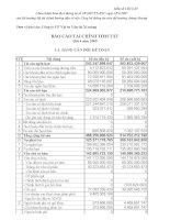 Báo cáo tài chính quý 4 năm 2009 - Công ty Cổ phần VICEM Vật tư Vận tải Xi măng