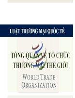 Luật thương mại quốc tế bai 2 tổng quan về tổ chức thương mại thế giới tong quan WTO