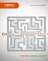 Báo cáo thường niên năm 2012 - Công ty cổ phần Chứng khoán VNDIRECT