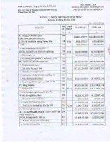 Báo cáo tài chính hợp nhất quý 1 năm 2012 - Công ty cổ phần Địa ốc Dầu khí
