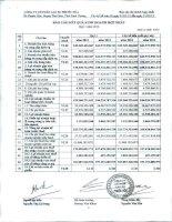 Báo cáo KQKD hợp nhất quý 1 năm 2012 - Công ty cổ phần Cao su Phước Hòa