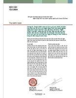 Báo cáo tài chính năm 2004 (đã kiểm toán) - Ngân hàng Thương mại Cổ phần Việt Nam Thịnh Vượng