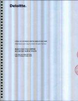Báo cáo tài chính năm 2015 (đã kiểm toán) - Công ty cổ phần Chứng khoán Dầu khí