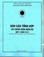 Báo cáo tài chính hợp nhất quý 2 năm 2013 - Tổng công ty Cổ phần Xây dựng điện Việt Nam
