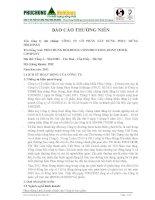 Báo cáo thường niên năm 2011 - Công ty cổ phần Xây dựng Phục Hưng Holdings