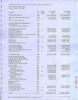 Báo cáo tài chính năm 2008 - Công ty Cổ phần Thương mại và Dịch vụ Dầu khí Vũng Tàu