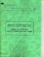 Báo cáo tài chính hợp nhất năm 2009 (đã kiểm toán) - Công ty cổ phần Đại lý Hàng hải Việt Nam