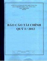 Báo cáo tài chính quý 1 năm 2012 - Công ty Cổ phần Thương mại và Dịch vụ Dầu khí Vũng Tàu