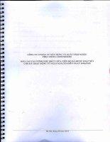 Báo cáo tài chính quý 2 năm 2010 (đã kiểm toán) - Công ty cổ phần Xây dựng Phục Hưng Holdings