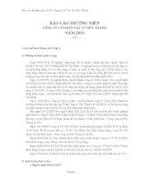 Báo cáo thường niên năm 2010 - Công ty Cổ phần Vật tư Bến Thành