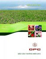 Báo cáo thường niên năm 2012 - Công ty cổ phần Dược phẩm OPC