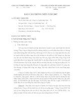 Báo cáo thường niên năm 2007 - Công ty Cổ phần Thép Việt Ý