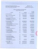 Báo cáo tài chính quý 3 năm 2009 - Tổng Công ty Cổ phần Dịch vụ Kỹ thuật Dầu khí Việt Nam