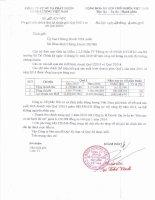 Báo cáo tài chính quý 1 năm 2015 - Công ty Cổ phần Đầu tư và Phát triển Năng lượng Việt Nam