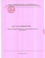 Báo cáo tài chính hợp nhất quý 4 năm 2012 - Công ty Cổ phần Bất động sản Du lịch Ninh Vân Bay