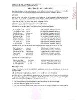 Báo cáo tài chính năm 2011 (đã kiểm toán) - Công ty cổ phần Sản xuất, Thương mại và Dịch vụ ôtô PTM