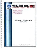 Báo cáo thường niên năm 2012 - Công ty Cổ phần Tập đoàn PAN