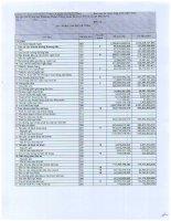 Báo cáo tài chính hợp nhất quý 1 năm 2013 - Công ty Cổ phần Khách sạn và Dịch vụ Đại Dương