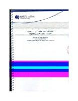 Báo cáo tài chính hợp nhất năm 2012 (đã kiểm toán) - Công ty Cổ phần Thủy hải sản Việt Nhật