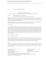 Báo cáo tài chính năm 2010 - Công ty Cổ phần Thương mại và Vận tải Petrolimex Hà Nội