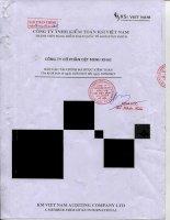 Báo cáo tài chính quý 2 năm 2015 (đã soát xét) - Công ty cổ phần Dệt Minh Khai