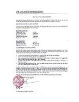 Báo cáo tài chính năm 2008 (đã kiểm toán) - Công ty cổ phần Cơ khí và Khoáng sản Hà Giang