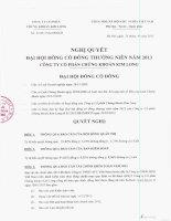 Nghị quyết Đại hội cổ đông thường niên năm 2013 - Công ty Cổ phần Chứng khoán Kim Long