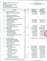 Báo cáo tài chính hợp nhất quý 3 năm 2011 - Công ty Cổ phần Tập đoàn Hoa Sen