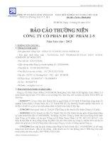 Báo cáo thường niên năm 2013 - CTCP Dược phẩm 2-9 TP. Hồ Chí Minh