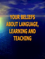 UNIT 4  your beliefs about language,learning   teaching