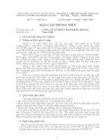 Báo cáo thường niên năm 2008 - Công ty Cổ phần Bánh kẹo Hải Hà